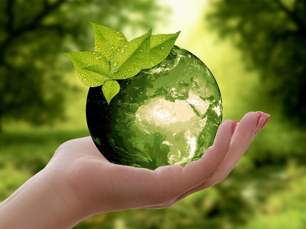 Activités environnementales