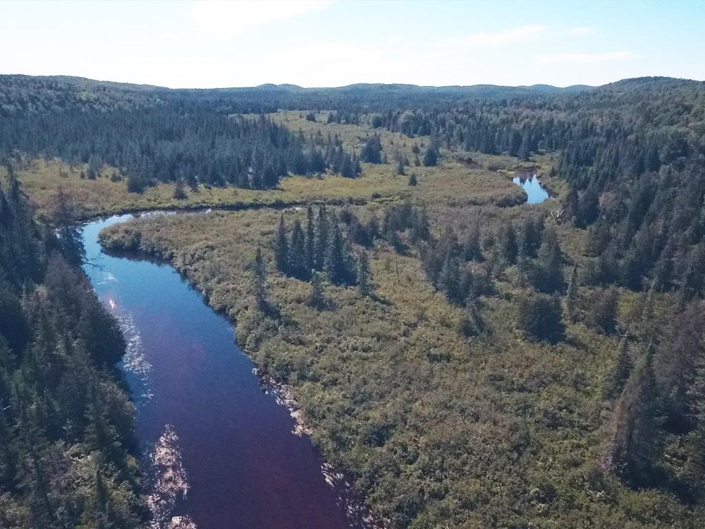 Vidéo La rivière dans tous ses états